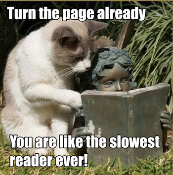 cat-reading-slow