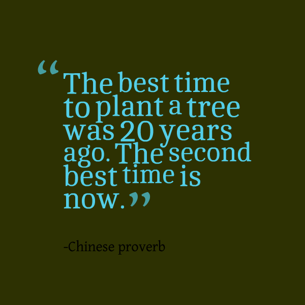 the-best-time-to-plant-a-tree-was-20-years-ago-the-second-best
