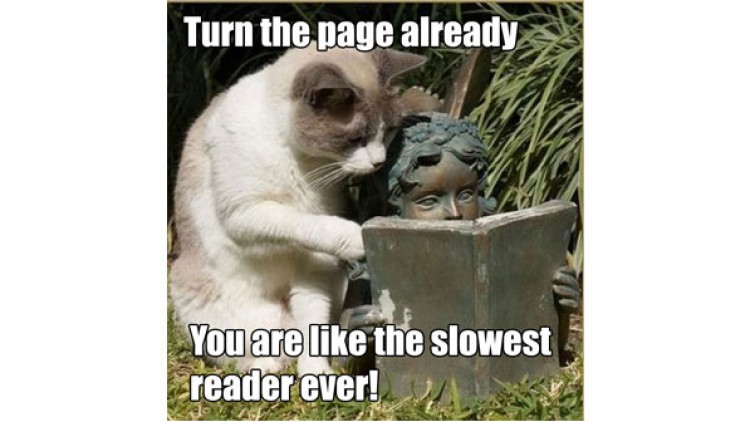 The Vicious Cycle of the Poor Reader