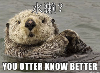 otter-know-better