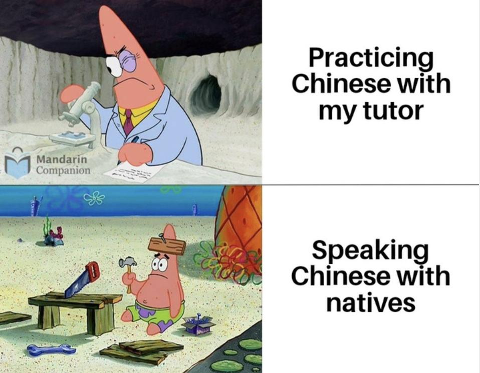 chinese tutor meme mandarin companion